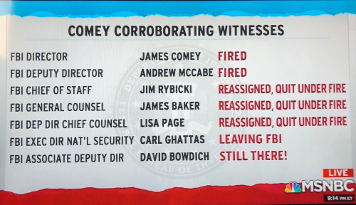 Comey Corroberating Witnesses