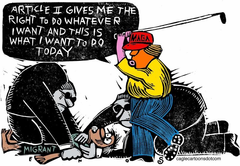 Trump reacts to gun deaths
