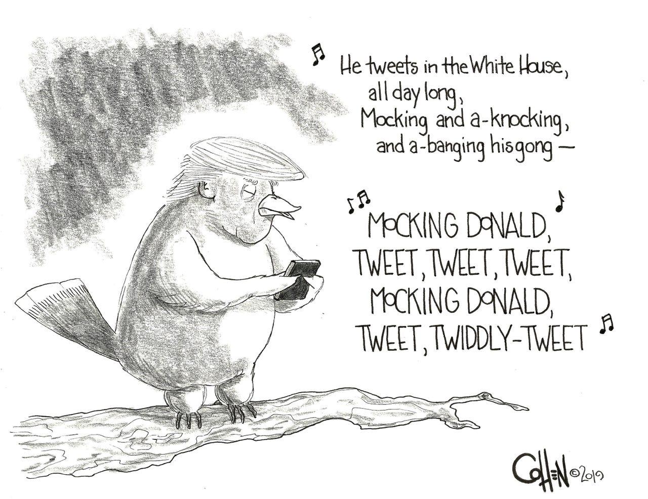 Mockin' Donald