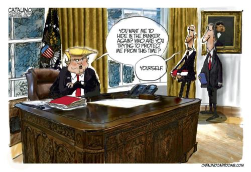 Cartoon_84